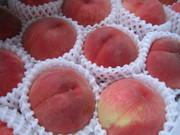 peach-box