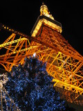 tokyoTower_with_XmasTree